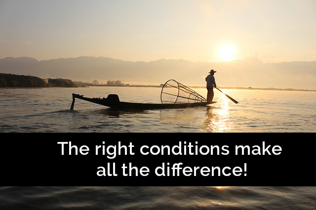 right conditions